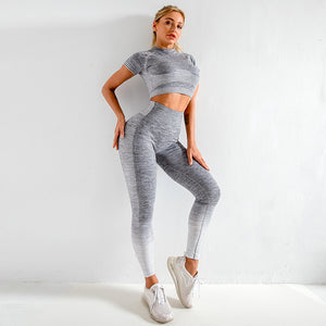 Seamless Women Yoga Set Long Sleeve Top High Waist Belly Control Sport Leggings Gym Clothes Seamless Sport Suit canbe alone buy - NETTEa
