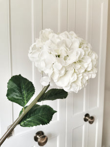 Giant Silk White Mophead Hydrangea Stem