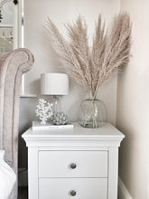 Load image into Gallery viewer, Extra Fluffy Natural Pale Brown Pampas Grass - Five Stems