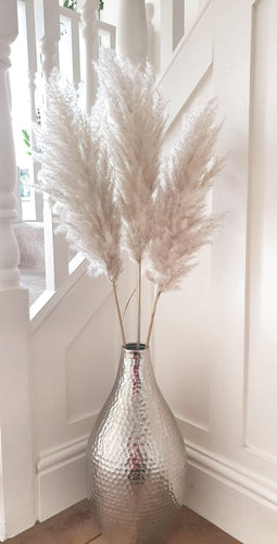 Extra Fluffy White/Natural Pampas Grass - Three Stems