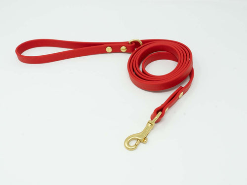 Waterproof standard lead - Chili