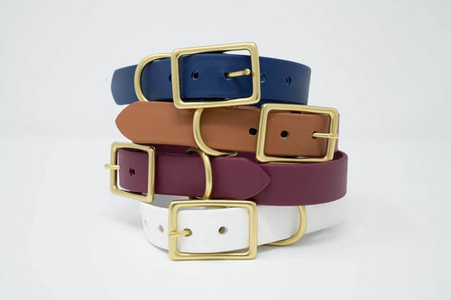 Traditional Waterproof Buckle Collar