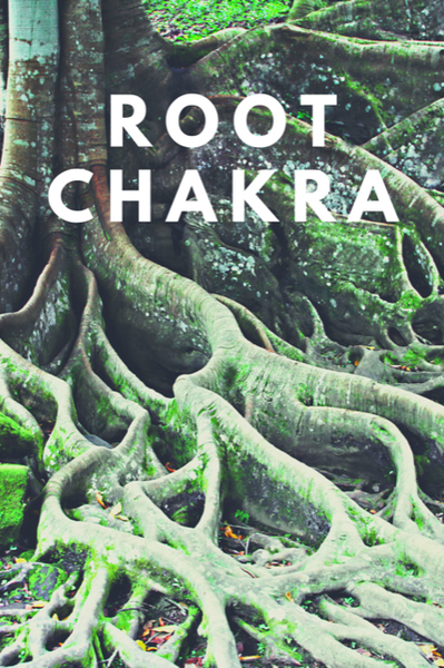 There's Power in the Root Chakra