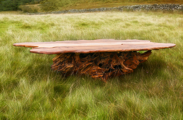 Rustic Handmade Reclaimed Elm and Oak Stump Coffee Table