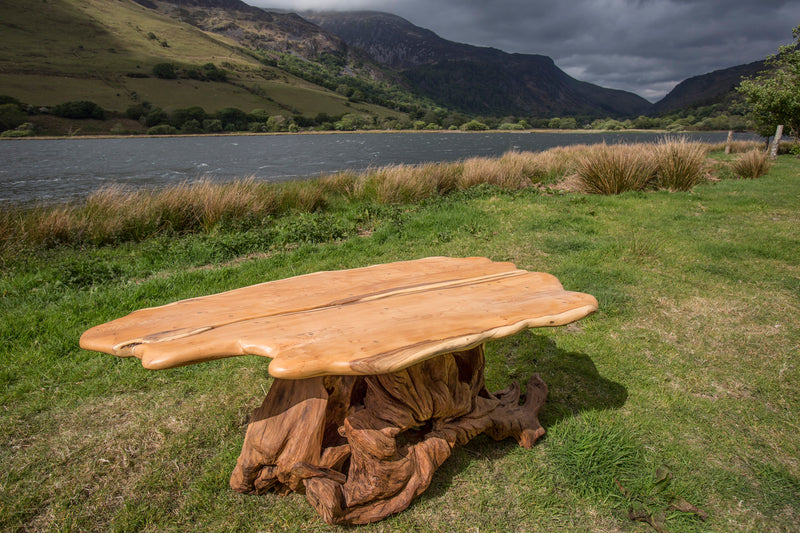 Rustic Salvaged Yew, Oak and Bog Oak Stump Coffee Table. Handmade in Wales, UK. View with Landscape.