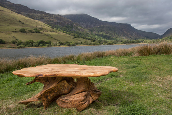 Rustic Alder and Oak Stump Coffee Table. Handmade in Wales, UK.