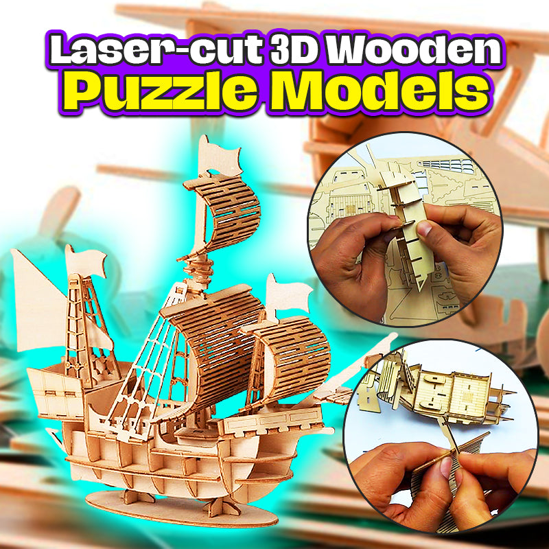 Laser-cut 3D Wooden Puzzle Models