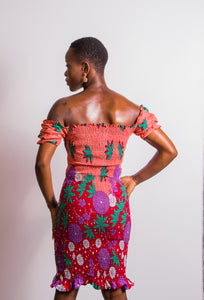 Anike Shirred Dress