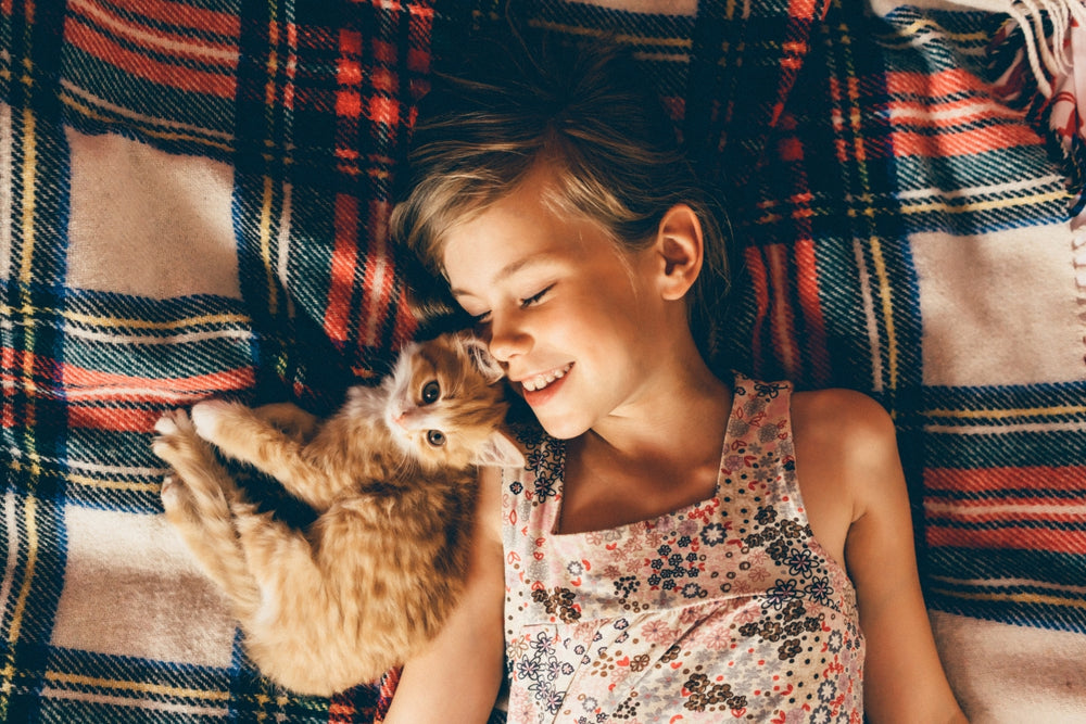 Kids and Cats: How to Ensure Everyone Gets Along