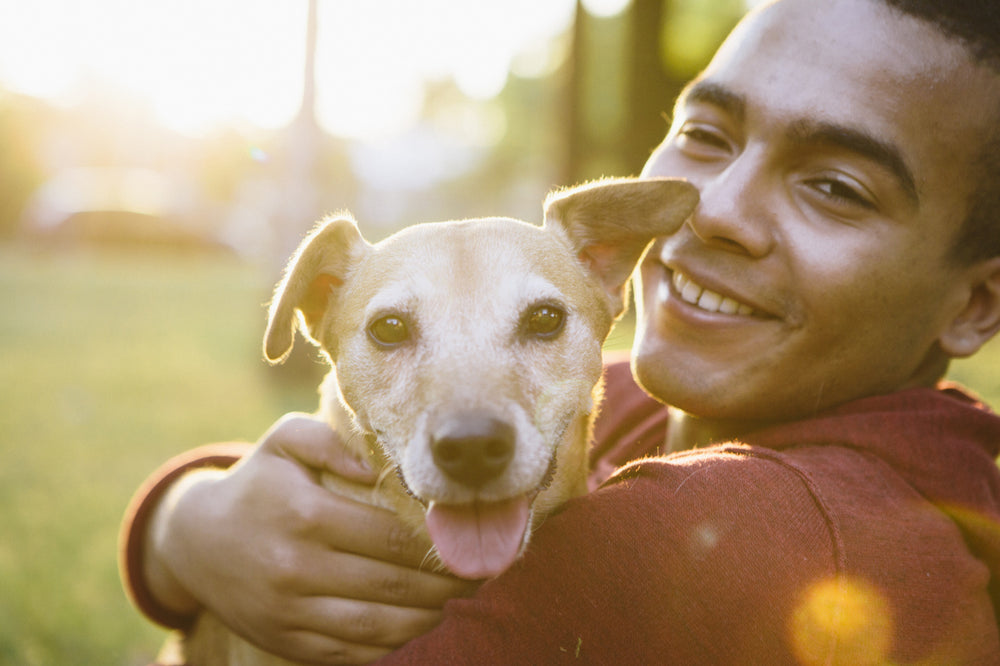How to Tell If You Need the Help of a Pet Psychologist