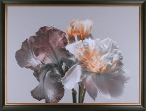 33.5X43.5 FLORAL (FRAMED STUCCO)