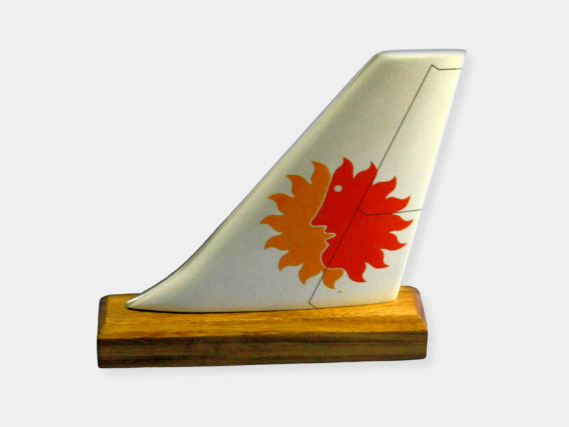 National Airlines Logo Tail