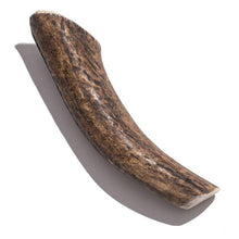 Load image into Gallery viewer, Elk Antler - Giant 6 Inch