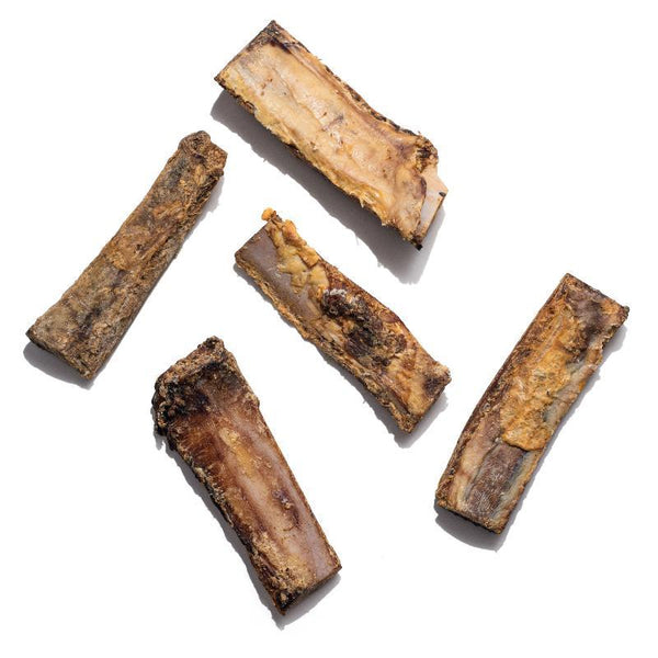 STOCKING STUFFER Rib Bones (5 pack)