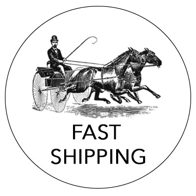 Fast Domestic Shipping