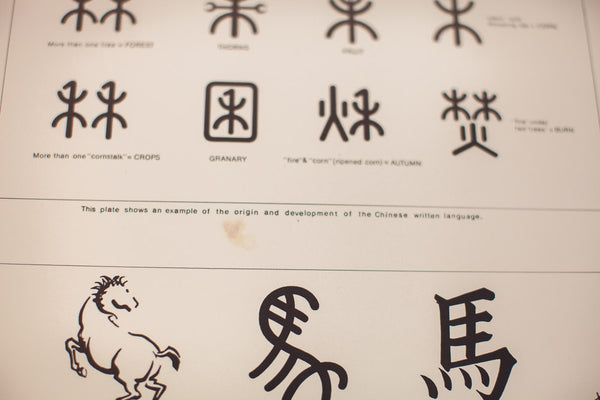 Vintage Chinese Symbol Chart