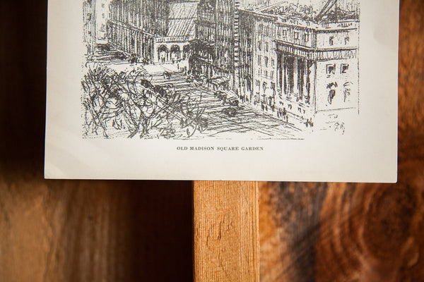Old Madison Square Garden Print - Old New House