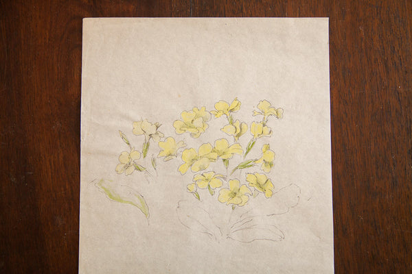 Antique Yellow Wildflowers In Watercolor Casual Sketch Series