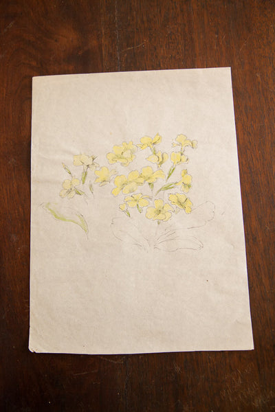 Antique Yellow Wildflowers in Watercolor, Casual Sketch Series - Old New House
