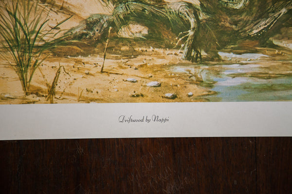 Beach Cape Scene Collecting Shells Lithograph - Old New House