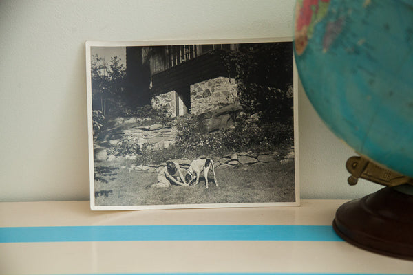 Girl and Dog Antique Photograph - Old New House