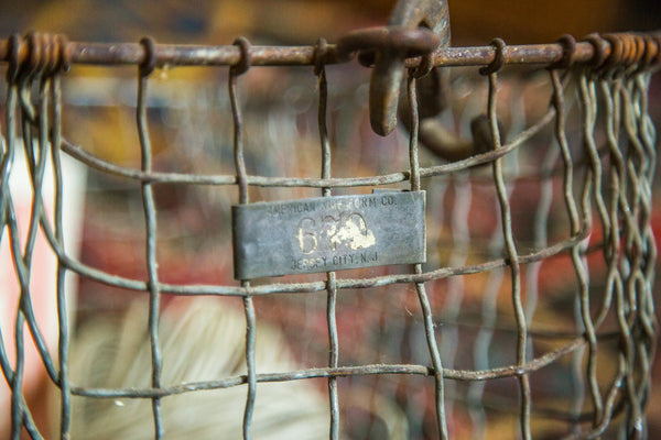 Mid Century Gym Locker Wire Basket American Wire Form - Old New House