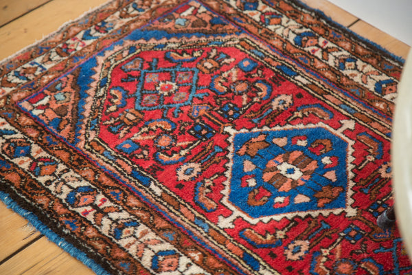 2x3 Persian Rug Mat - Old New House