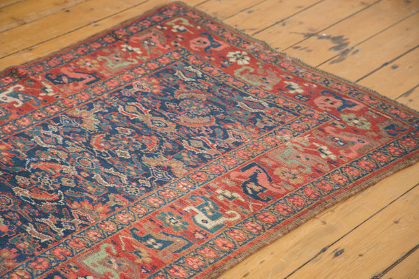 3.5x14 Antique Kurdish Bidjar Rug Runner - Old New House