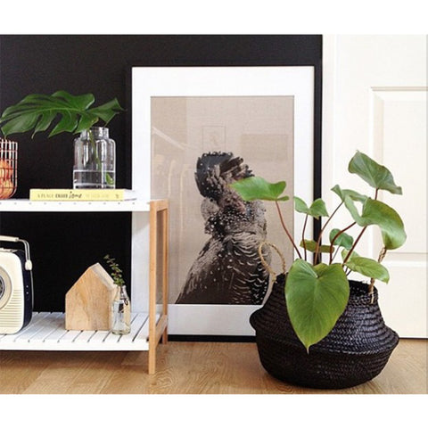 LG Charcoal Belly Basket by Olli Ella - Old New House