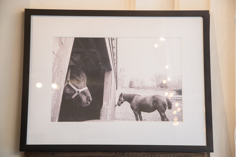 Muscoot Farm Horse Photograph - Old New House