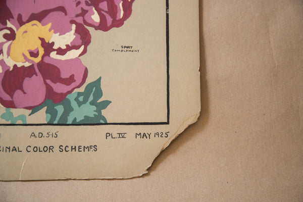 Vintage 1920's Botanical Painting - Old New House