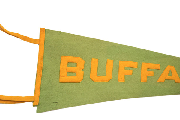 Antique Buffalo NY Felt Flag - Old New House