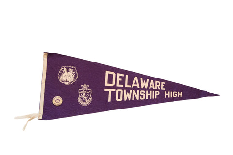 Delaware Township High NJ Lions with Pin Felt Flag - Old New House