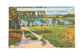 Vintage Catskills NY Postcard Path, Lake, and Trees