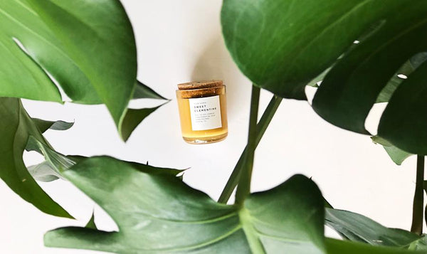 Sweet Clementine Soy Candle