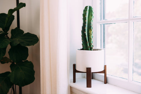 Modern White Ceramic and Wooden Planter // ONH Item 7058