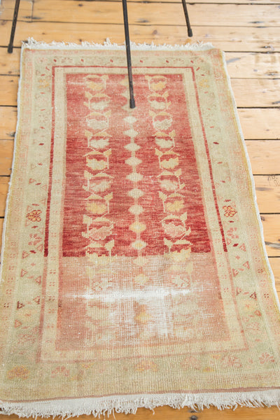 2x4 Distressed Oushak Rug Runner - Old New House