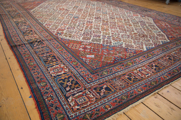 Vintage Distressed Joshegan Carpet