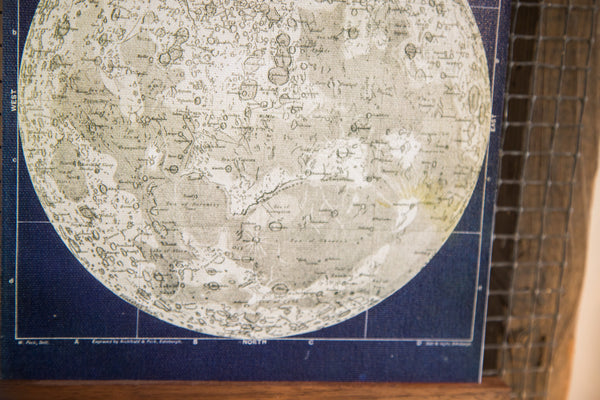 Mini Moon Chart Art Print Canvas Navy and Ivory - Old New House