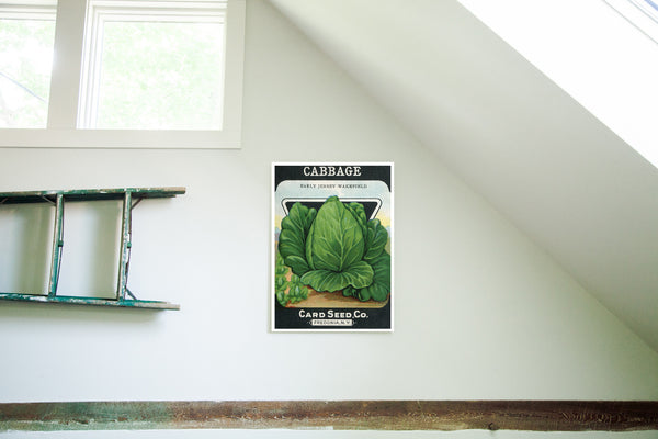 Vintage Cabbage Vegetable Seed Packet Birchwood Wall Art - Old New House