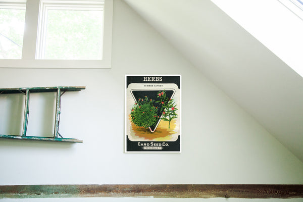 Vintage Herbs Seed Packet Birchwood Wall Art - Old New House