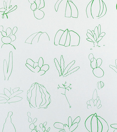 Minimalistic Succulent Sketches in Green Makelike Poster - Old New House