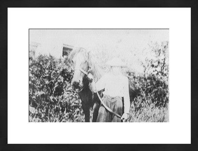 Antique experimental photograph revival woman with horse old new house