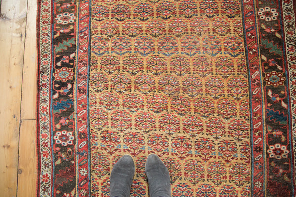 Antique Halvai Bijar Rug / Item sm001108 image 2