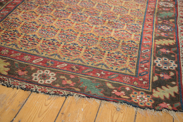 Antique Halvai Bijar Rug / Item sm001108 image 5
