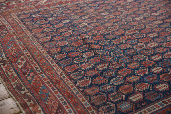 Antique Afshar Square Carpet / Item sm001316 image 5