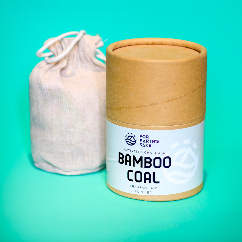 Bamboo Coal Air Purifier