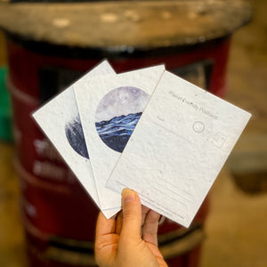 Plantable Seed Paper Postcards