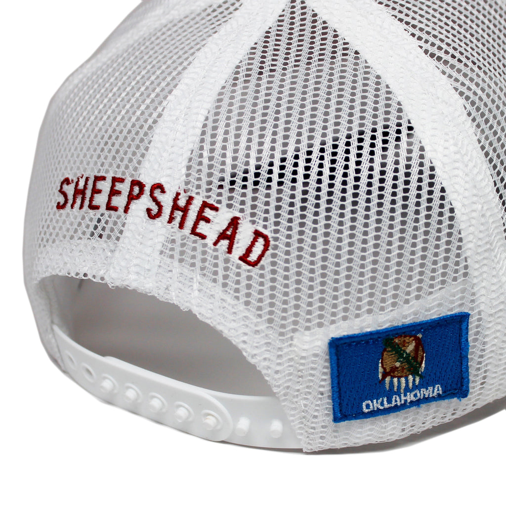 Snapper - Sheepshead  - 5