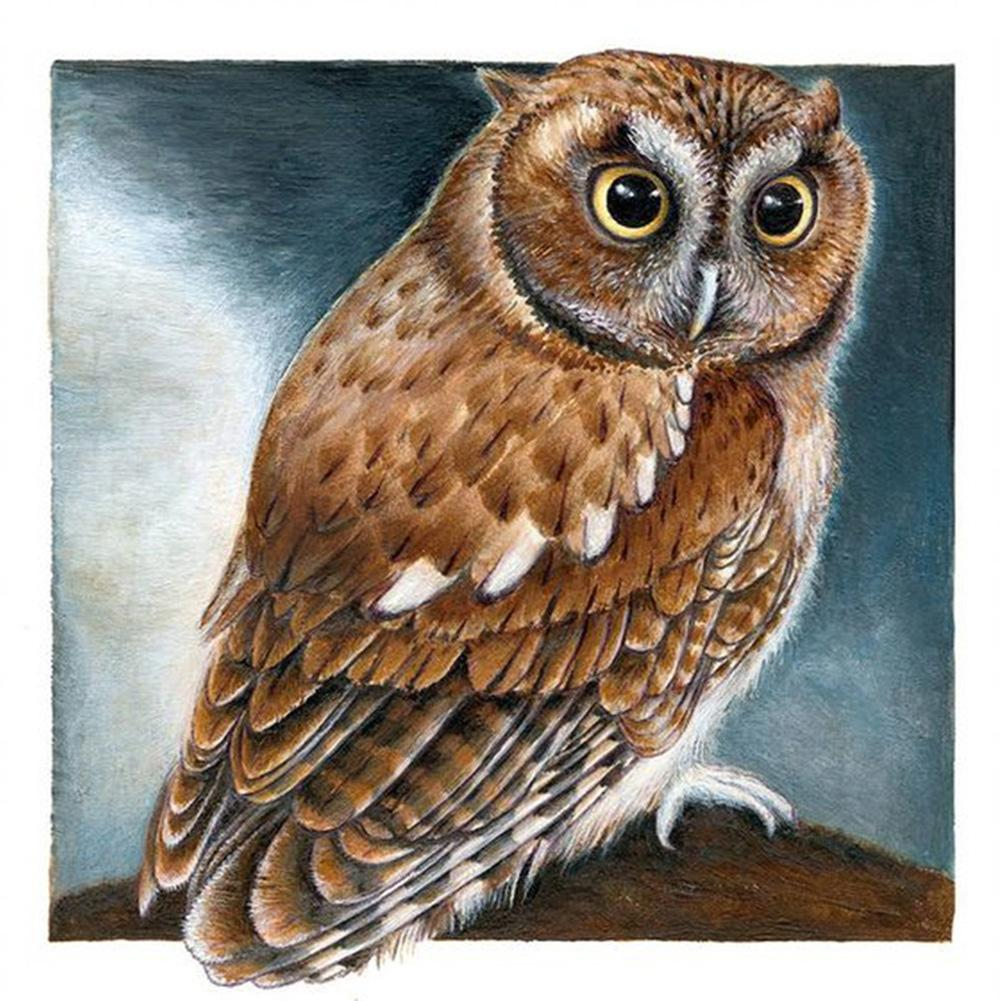 Diamond Painting - Full Round - Owl